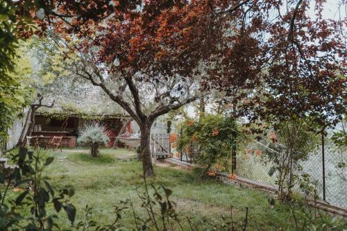 A garden outside Ostello Bello Assisi Bevagna