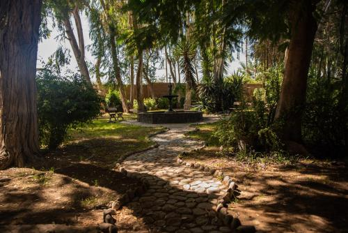 A garden outside Hotel Majoro