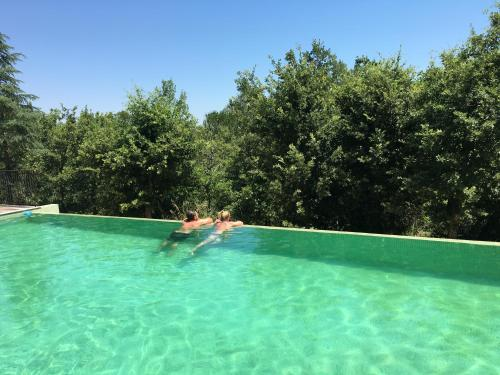 The swimming pool at or near Sous Les oliviers - SPA jacuzzi - charming B&B