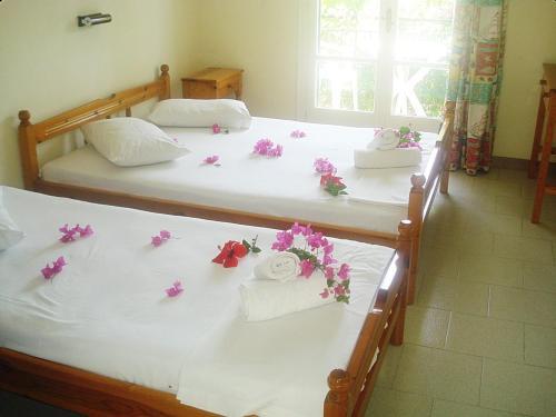 Легло или легла в стая в Villa Theodora