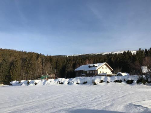 Ferienwohnung Lackenhäuser im Winter