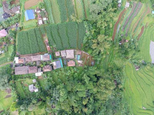 A bird's-eye view of Pondok Nyoman