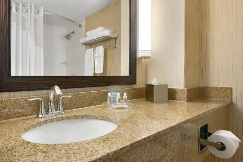 A bathroom at Holiday Inn & Suites Duluth-Downtown, an IHG Hotel