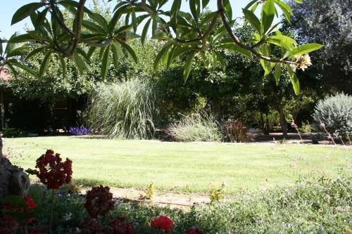 גינה חיצונית ב-זהר בדשא - עין הבשור (Zohar Badeshe - Ein Habesor)