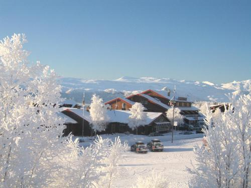 Bergo Hotel, Apartments and Cottages om vinteren