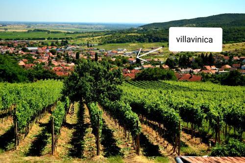 Letecký snímek ubytování Villa Vinica