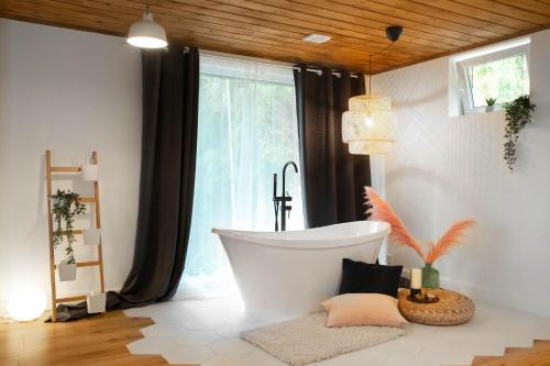 """Vannas istaba naktsmītnē Lodge """"Ezīša Midziņa"""""""