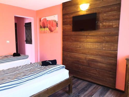 Телевизия и/или развлекателен център в Хотел Авалон