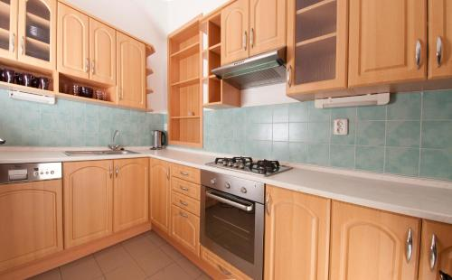 Kuchyň nebo kuchyňský kout v ubytování U Patrona Apartment