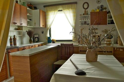 A kitchen or kitchenette at Erdőalja Vendégház