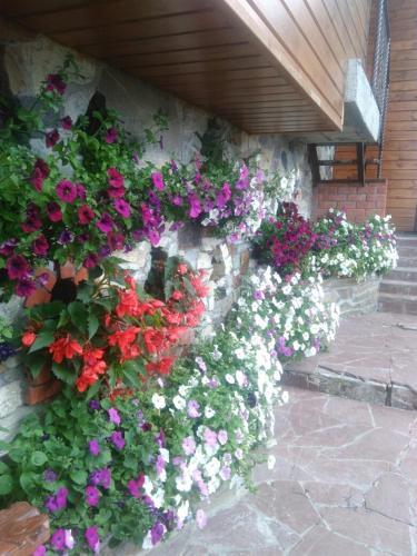 A garden outside Zyuratkul - Dom Tayozhnika