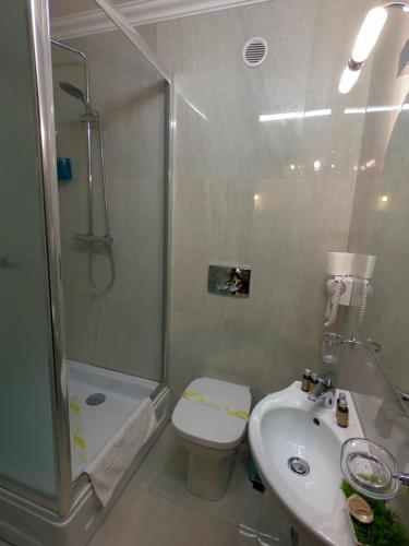 A bathroom at Casa Bucovineana