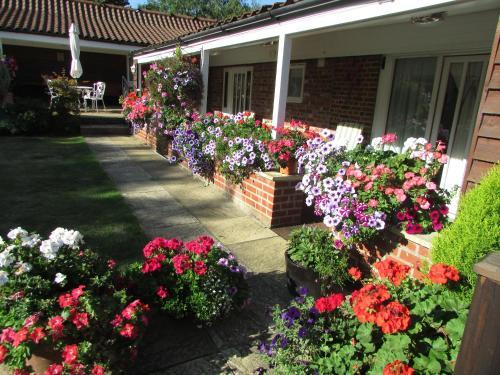 A garden outside Decoy Barn Fritton