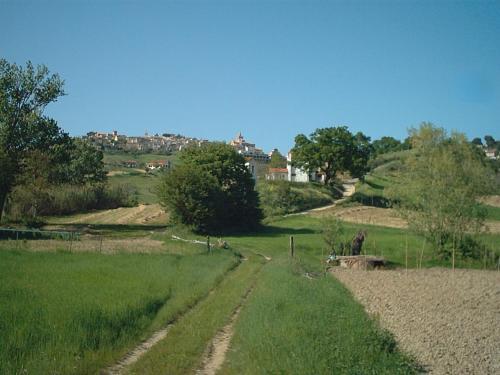 A garden outside Le Cicale