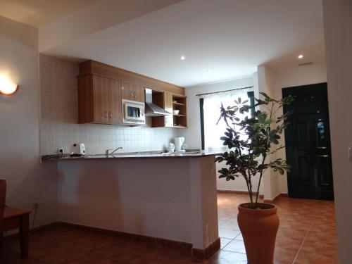 Kuhinja oz. manjša kuhinja v nastanitvi Apartamentos Lanzarote Paradise