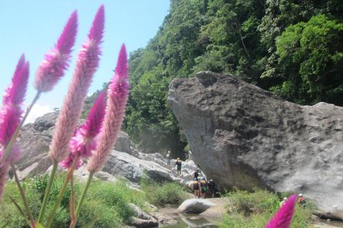 Natural landscape near the lodge