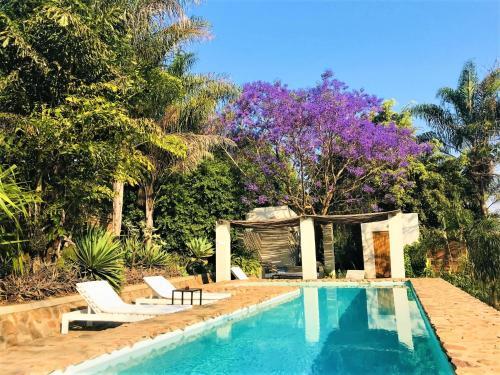 Het zwembad bij of vlak bij Africa House Malawi