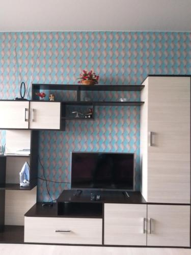 A television and/or entertainment center at Apartment Inzhenernaya 62A