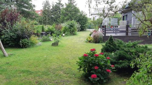 A garden outside Domik na Kurshskoi Kose