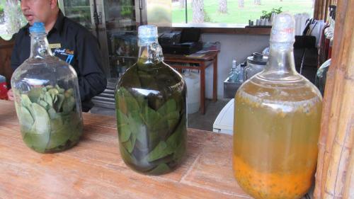 Drinks at Guizado Portillo Hacienda & Resort