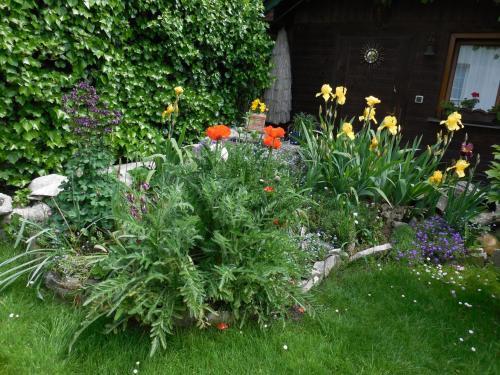 A garden outside Apartmany Sabo