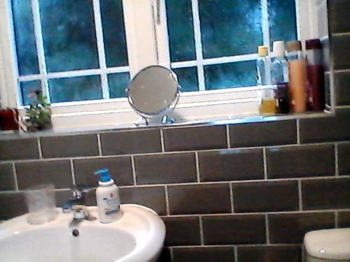 A bathroom at the brier house