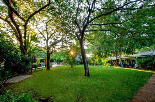 A garden outside Bayete Guest Lodge