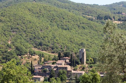 Vista aerea di Casina