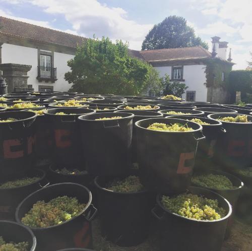 Restaurant ou autre lieu de restauration dans l'établissement Quinta De Guimaraes
