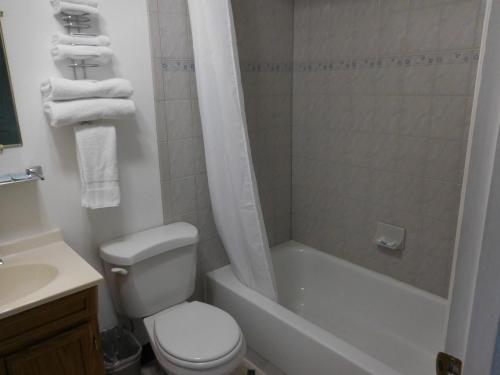 A bathroom at Galaxie Motel
