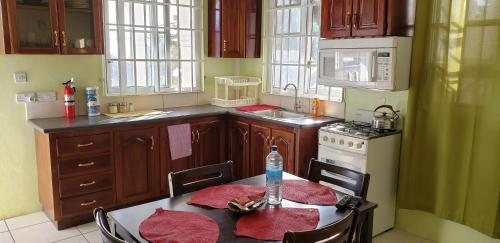 A kitchen or kitchenette at Unit 2 Private Apartment - Roseau