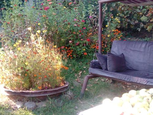 A garden outside Koghb Hillside B&B