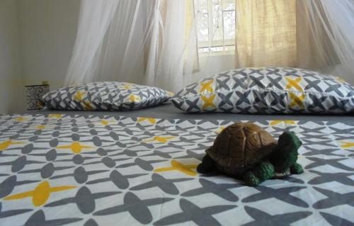Uma área de estar em Happy Turtle Apartments