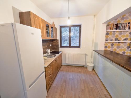 Kuchyňa alebo kuchynka v ubytovaní Chata Vista