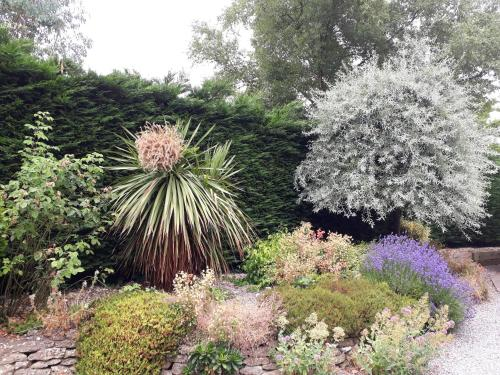 A garden outside Stoneleigh Barn Bed and Breakfast