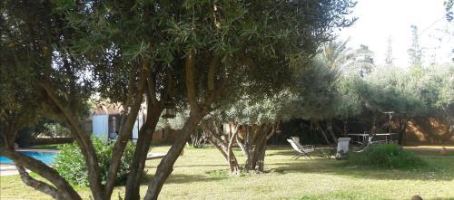 Jardin de l'établissement Douar Lain