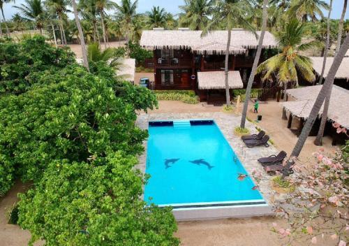 Vista de la piscina de Nilaveli Beach Resort o alrededores