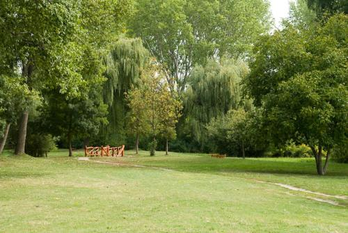 A garden outside Mandala panzió