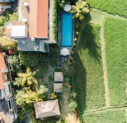 A bird's-eye view of Byasa Ubud