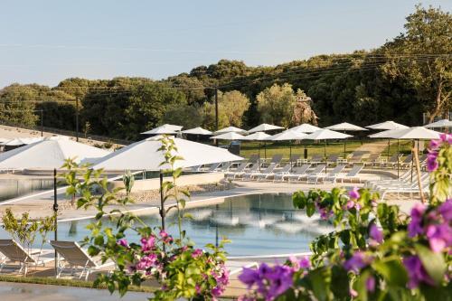 Widok na basen w obiekcie Camping Homes Mon Perin lub jego pobliżu