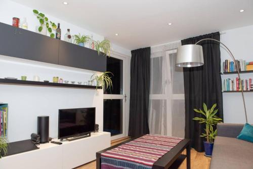 A television and/or entertainment center at Spacious Modern 1 Bedroom Flat In Islington