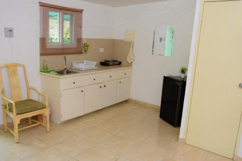 A cozinha ou cozinha compacta de Cozy caribbean studio with optional SUV 1