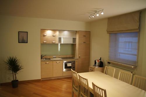 Kuchyň nebo kuchyňský kout v ubytování Szucha Residence Apartment