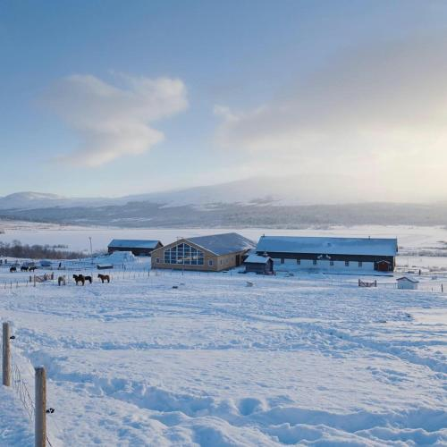 Hjerkinn Fjellstue om vinteren