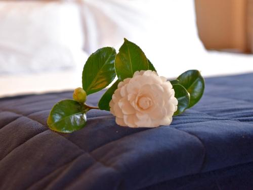 A bed or beds in a room at Akaroa Cottages Woodside - Akaroa Holiday Cottage