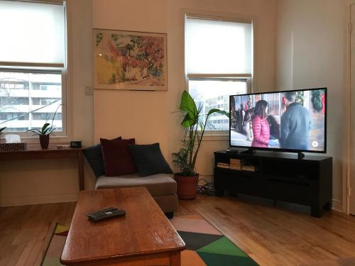 A television and/or entertainment center at Executive Underground Apartment