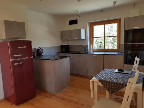 Küche/Küchenzeile in der Unterkunft Apartment Eichetwald