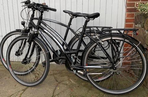 Radfahren an der Unterkunft Apartment am Schloßpark oder in der Nähe