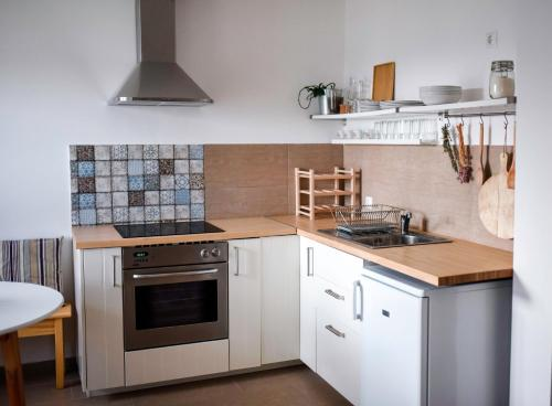 A kitchen or kitchenette at House of the Golden Horse in Hosszúréti Lovas Major