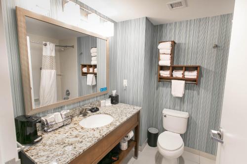 A bathroom at Hampton Inn & Suites - Orange Beach